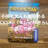 【レビュー】子供と遊べるカードゲーム「DRECSAU 〜キレイがきらい〜」